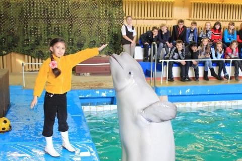 В Ярославском дельфинарии произошел пожар.