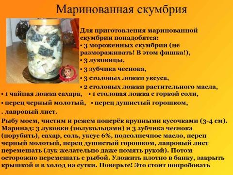 skumbriya-marinovannaya-v-domashnih-usloviyah