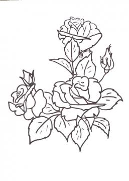 Рисунок карандашом щелкунчик схема