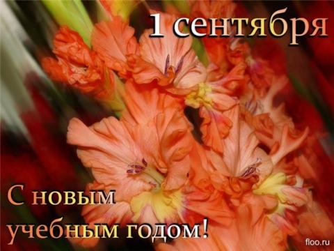 3177983-073b01dd01b10021.jpg
